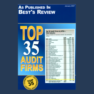 media bswllc top audit firms